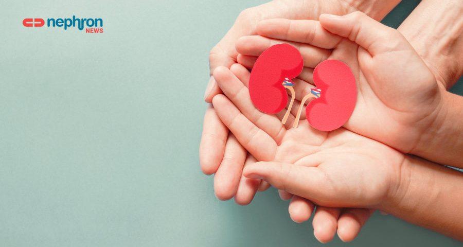 δυο παλάμες που κρατούν δυο νεφρά