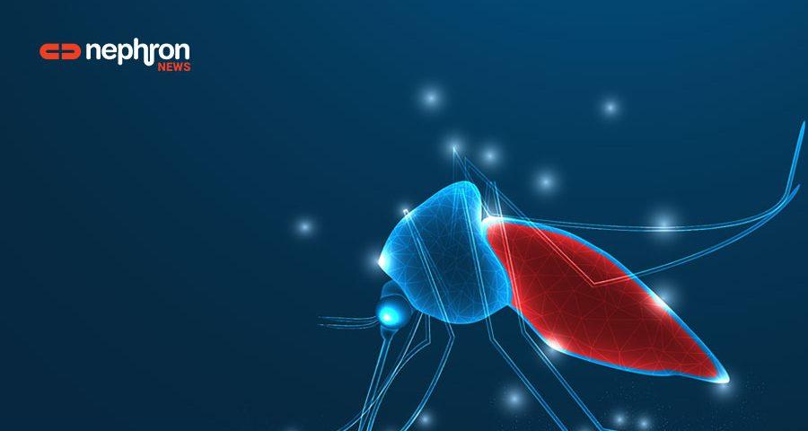 blue-mosquito