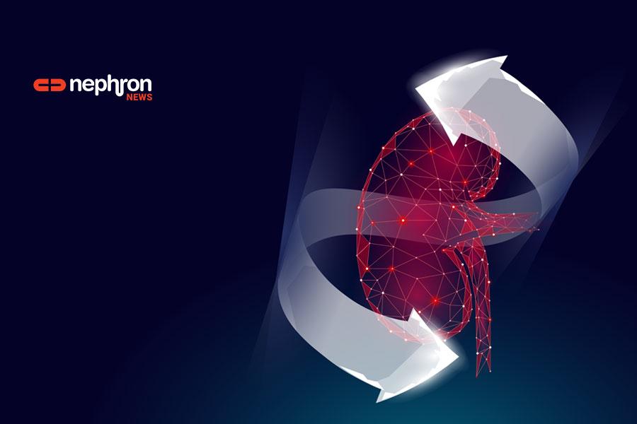 3d-future-kidney