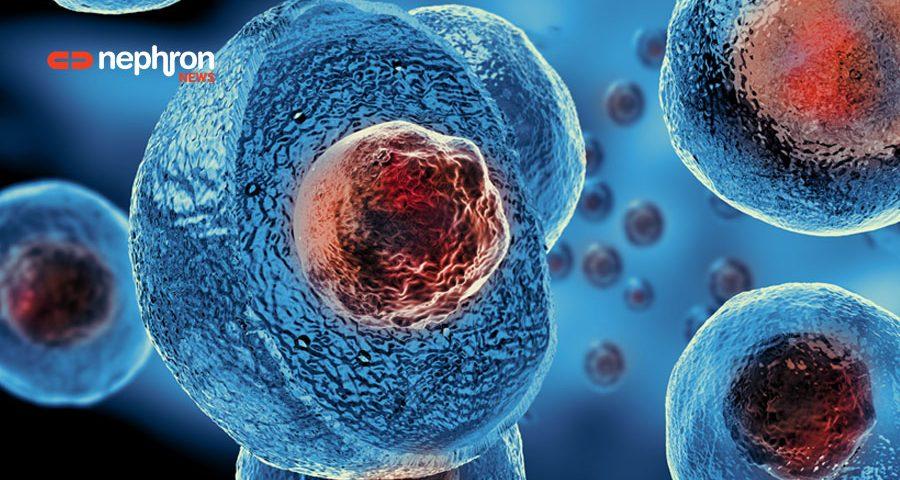 Νέα θεραπεία με βλαστικά κύτταρα από ομφάλιο λώρο