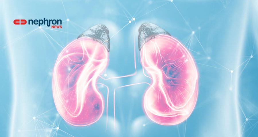 νεφρά και επινεφρίδια